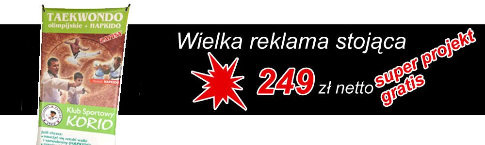 Popularny pajączek z oferty - gadżety reklamowe Olsztyn